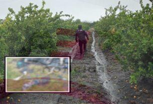 Encuentran tres cuerpos mutilados y calcinados en Labor de Peralta 4