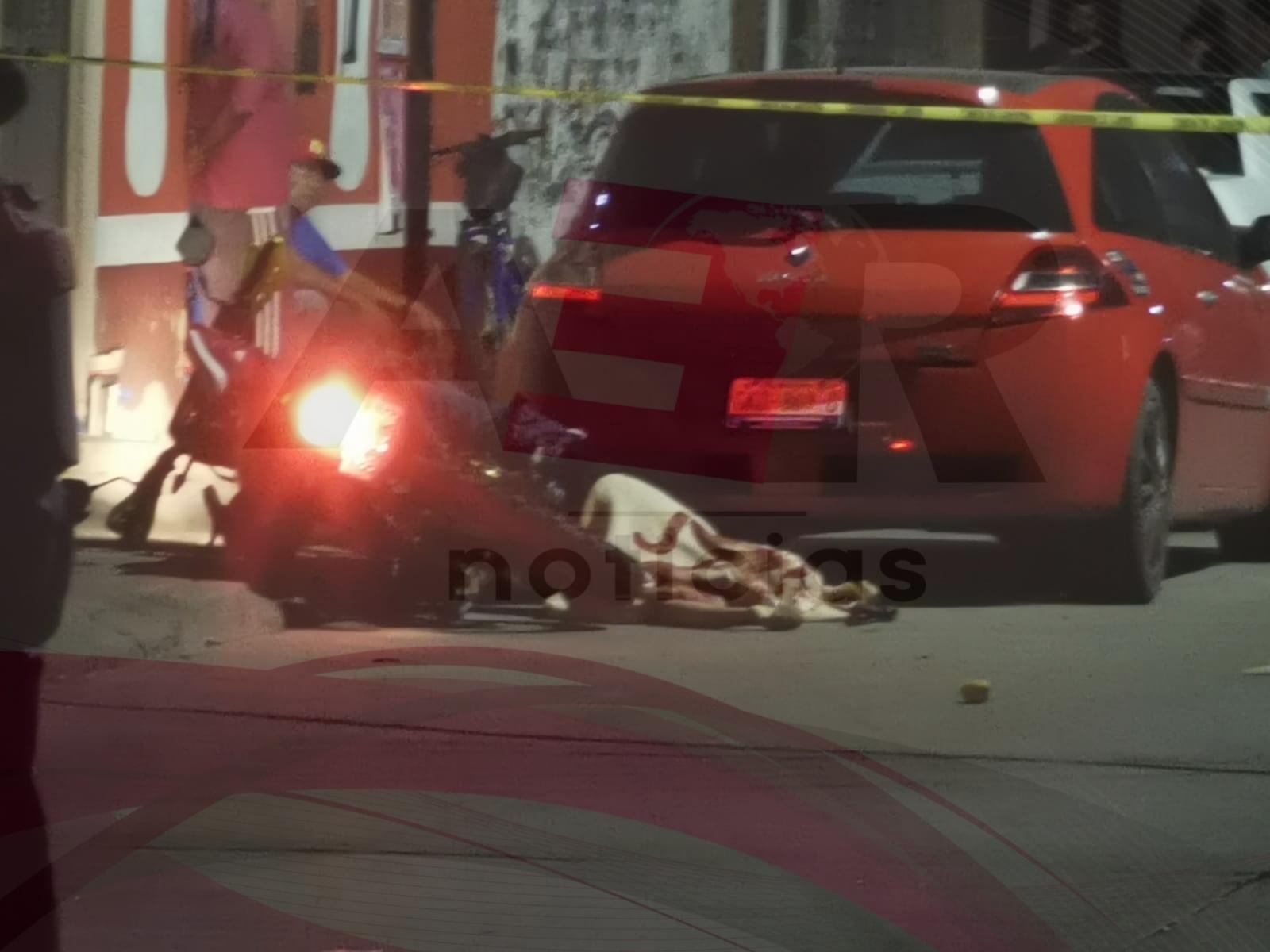 Un muerto y cuatro lesionados, dejan como saldo ataques armados en la colonia Nuevo México 1