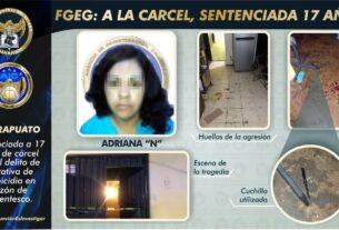 Sentencia de 17 años para mujer que intentó matar a sus dos hijos en Irapuato 3