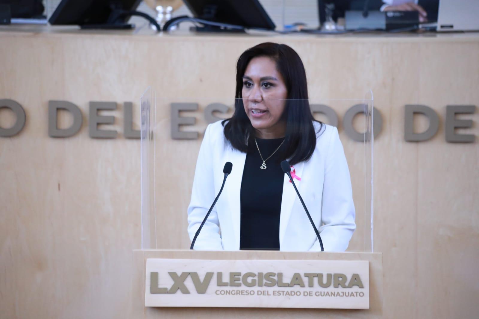 Diputados locales del PAN califican de retrógrada iniciativa de reforma eléctrica del Gobierno Federal 3